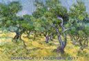 Nicosia, il 15 e 17 dicembre si svolgerà la V sagra dell'ulivo e dell'olio