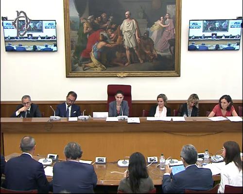 Revisione della geografia giudiziaria, il ministro Bonafede in audizione nelle commissioni parlamentari – VIDEO