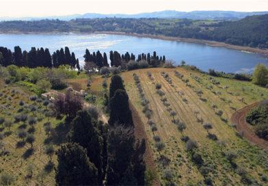 Enna, un video su Pergusa e la sua Riserva è stato presentato dall'Accademia Pergusea